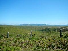 pt reyes landscape