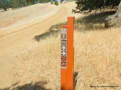 nature trail junction-go straight