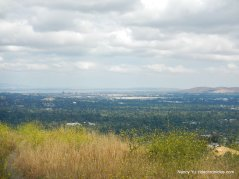ridge top views-carquinez strait