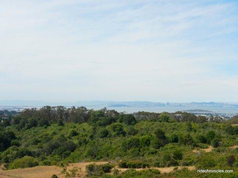 McCosker Trail view