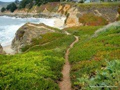 coastal views-bluffs