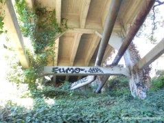 leimert bridge