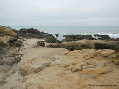 tide pool area
