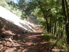castle park trail