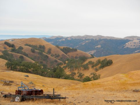 welch creek-apperson ridge views