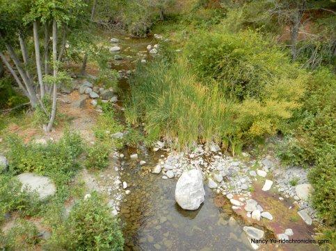 leyden creek