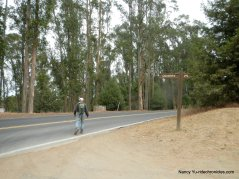 to wildcat canyon rd