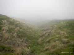 lougher loop trail