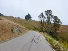 prefumo canyon rd