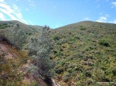 chaparral slopes