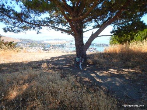 w ridge trail