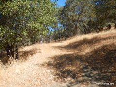 unmarked fire road-private property