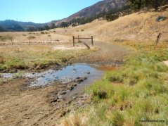 dunn creek