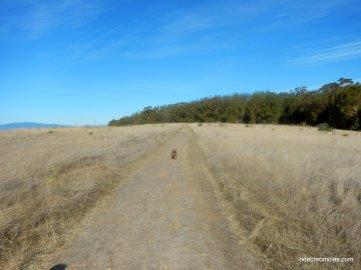 powerhouse trail