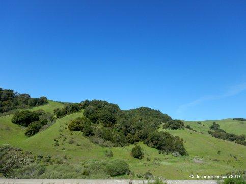wilson hill rd