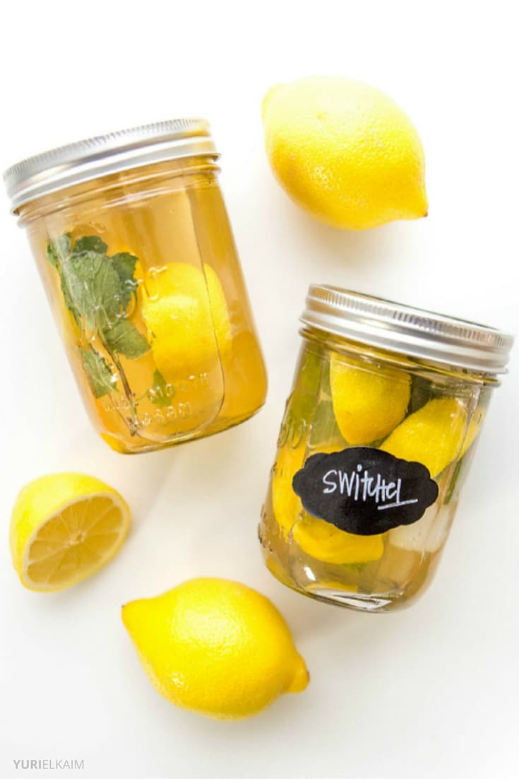 Switchel The Apple Cider Vinegar Detox Drink  Yuri Elkaim
