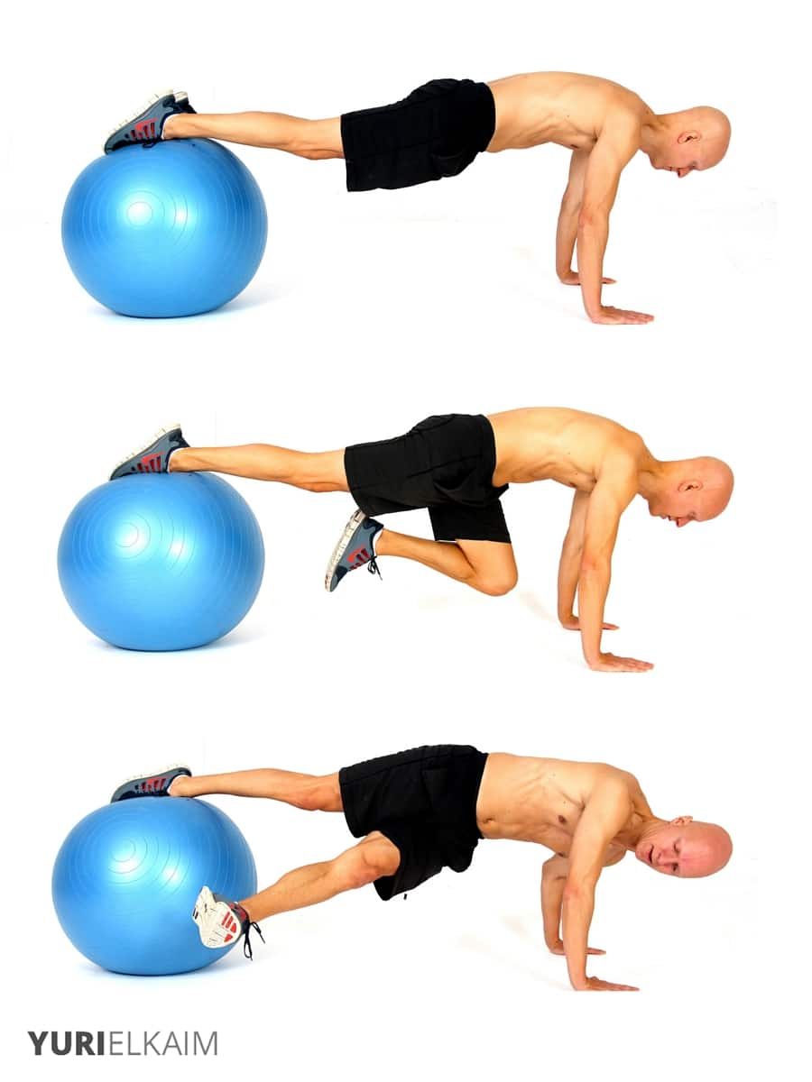 medium resolution of the 14 best ab exercises stability ball grasshopper