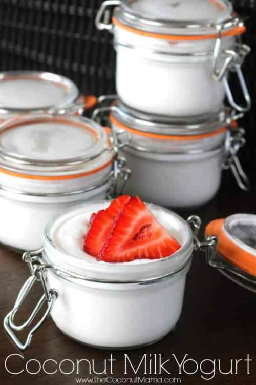 8 Probiotic Rich Food Recipes You Should Add To Your Diet-Coconut Milk Yogurt - The Coconut Mama