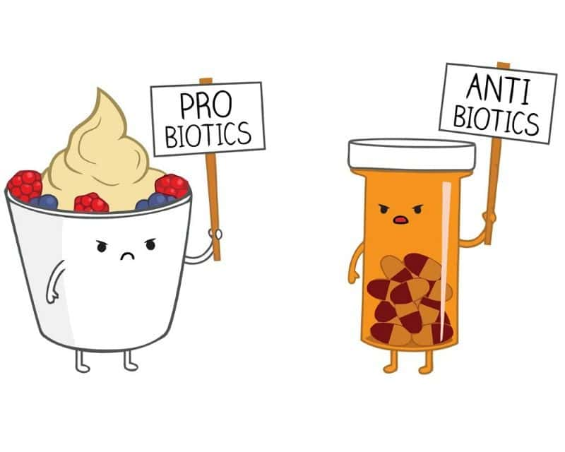 How to Properly Take Probiotics with Antibiotics   Yuri Elkaim
