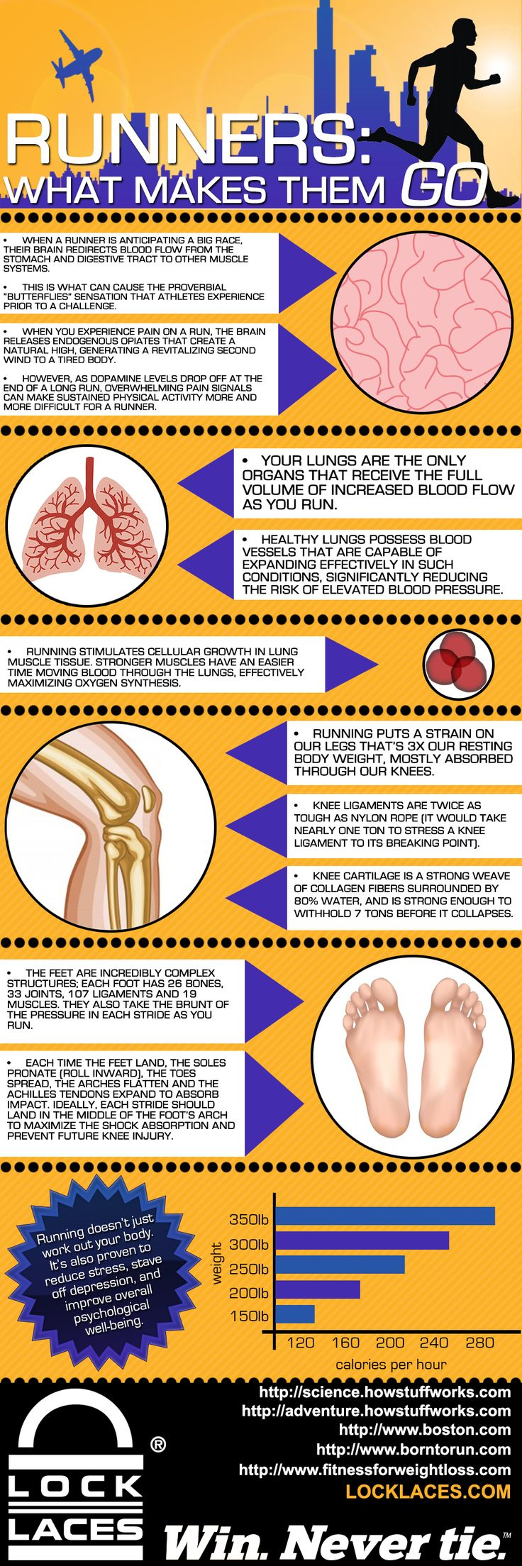 Runners: What makes them go? infographic