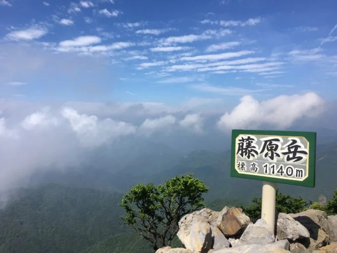 藤原岳の山頂