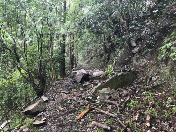 落石のある多度山瀬音の森コース