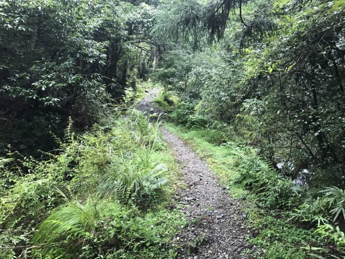 多度山の瀬音の森コース