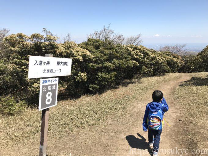 入道ヶ岳北尾根通報ポイント8
