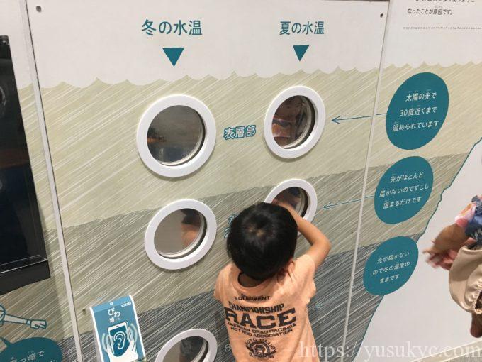 琵琶湖博物館C展示室
