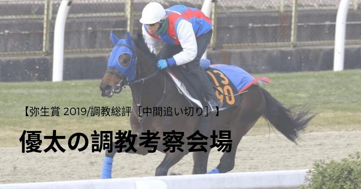 【弥生賞 2019/調教総評[中間追い切り]】