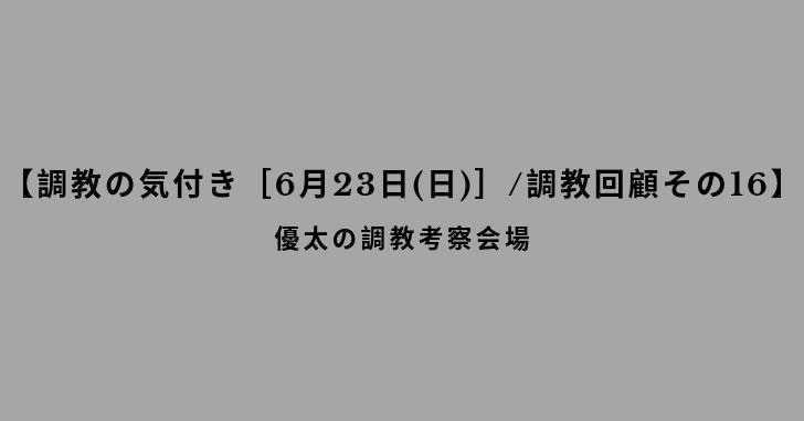 【調教の気付き[6月23日(日)]/調教回顧その16】