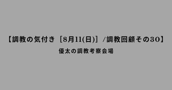 【調教の気付き[8月11(日)]/調教回顧その30】