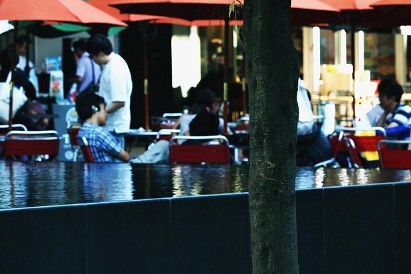 水面とカフェ