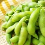 犬が枝豆を食べても大丈夫?アレルギーや毒は?その対策は?