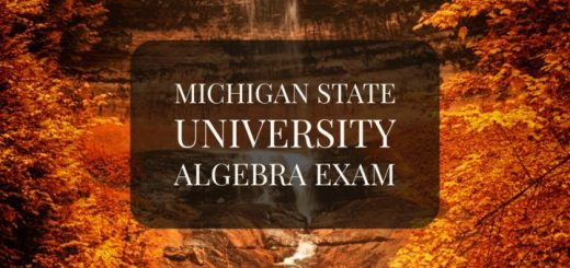 Michigan State University Abstract Algebra Exam Problems and Solutions