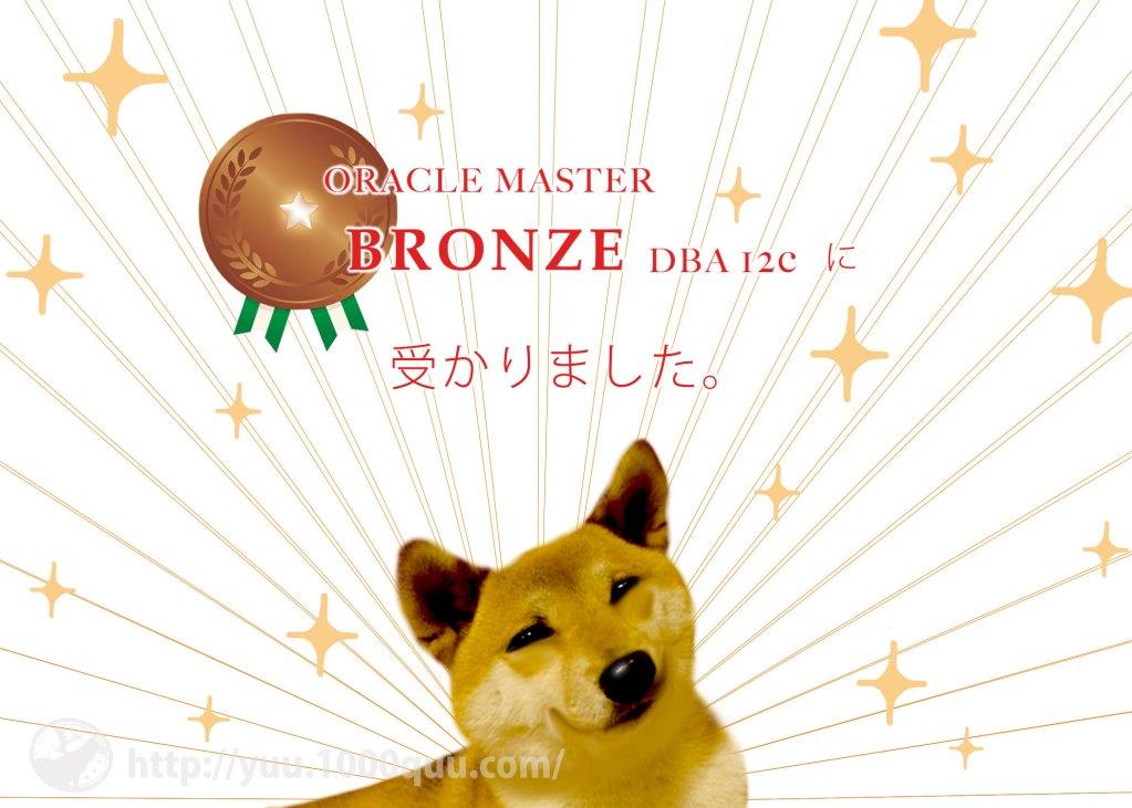 ORACLE MASTER Bronzeの感想のアイキャッチ画像