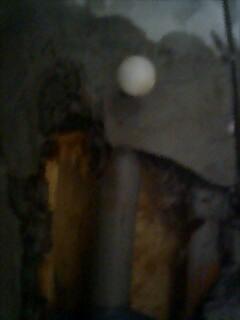 給水管に見事に刺さった化粧ビス