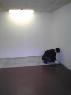 こっちは会議室の床色違い