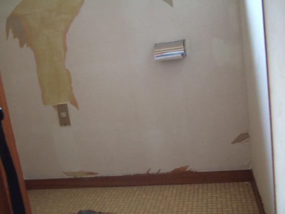 便器は撤去済み壁紙はがし済み