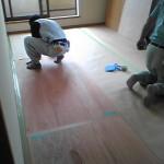 床はそのまま使うので薄べニアでガード