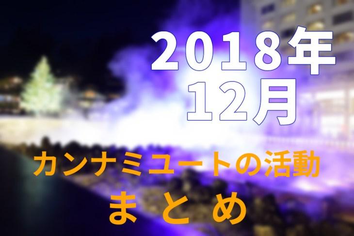 2018年12月カンナミユートの活動まとめ