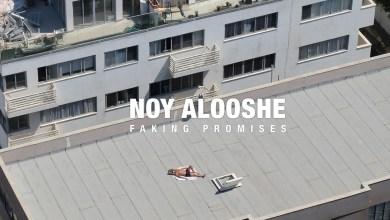 Faking Promises Noy Alooshe