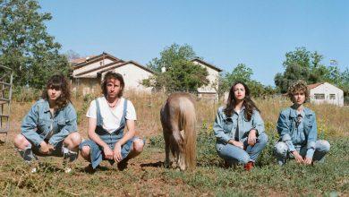 Photo of סוס מביט – Soos Mabit