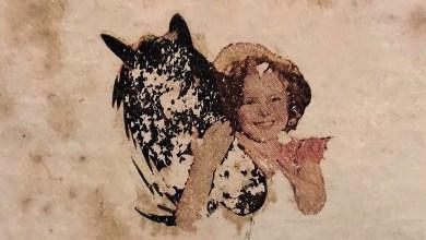 Photo of ג׳ירפות – היא לא יודעת למה