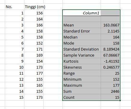 hasil-statistik-deskriptif-excel