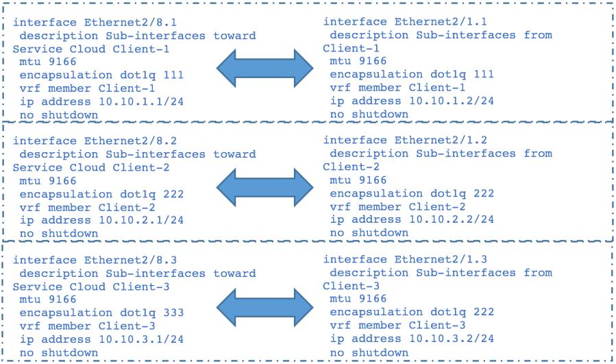 VXLAN Border Leaf Sub-interfaces