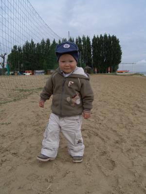 ein Krümel im Sand unterwegs