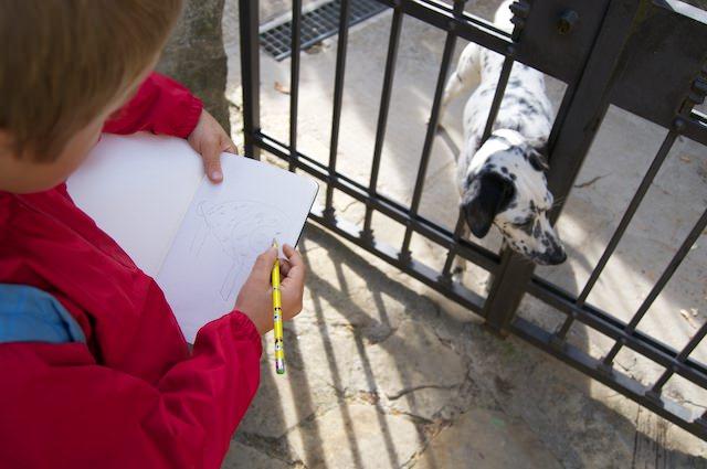 Yves disegna un cane che incontra a Cortona