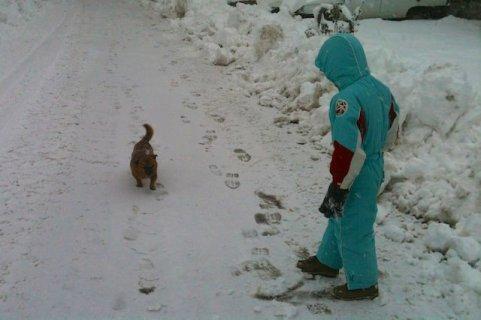 Fonzie incontra Tobi per strada