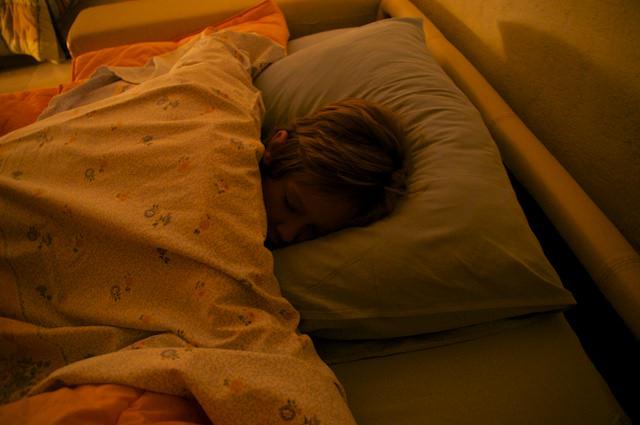 Il piccolo Fonzie dorme nel B&B